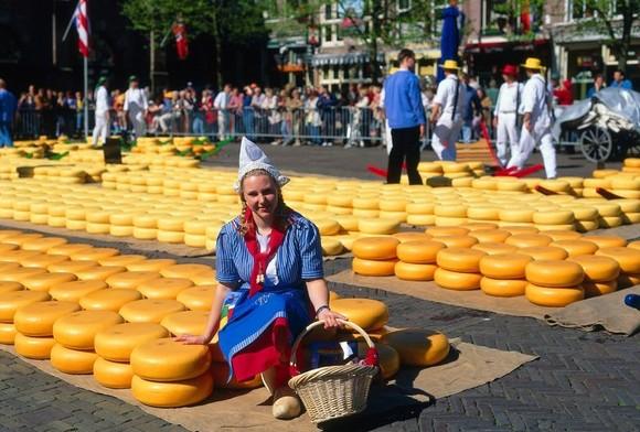 верхней губе голландия сквозь дырки от сыра том числе Оригинальные