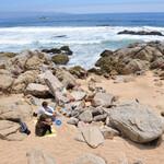 Океан прохладен, но отдохнуть на берегу самое милое дело.