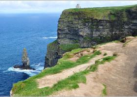 Ирландские  Мохеры.
