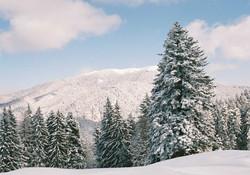 Для горнолыжников организуют чартер в Румынию