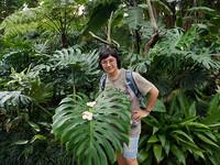 Город орхидей. Полтора дня в Сингапуре.