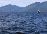 Алтай. Телецкое озеро