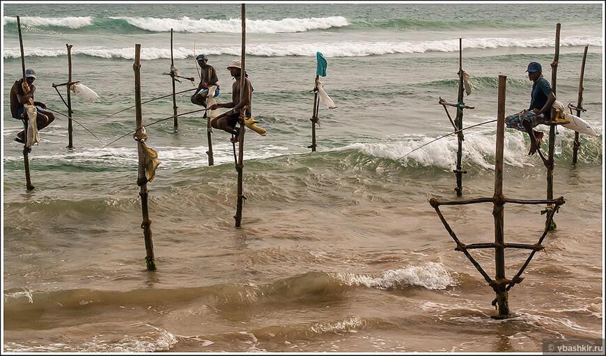 Традиционные ланкийские рыбаки.