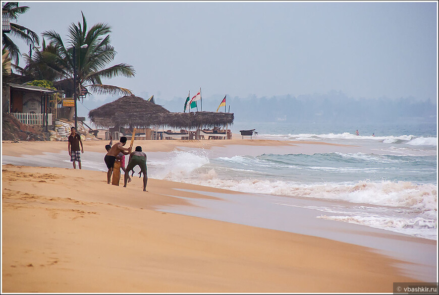 Вечерами на пляжи ланкийцы на пляже играют догадайтесь во что! Нет, никакой это не американский футбол. Тут от британцев в наследство осталась другая общенациональная игра - крикет!