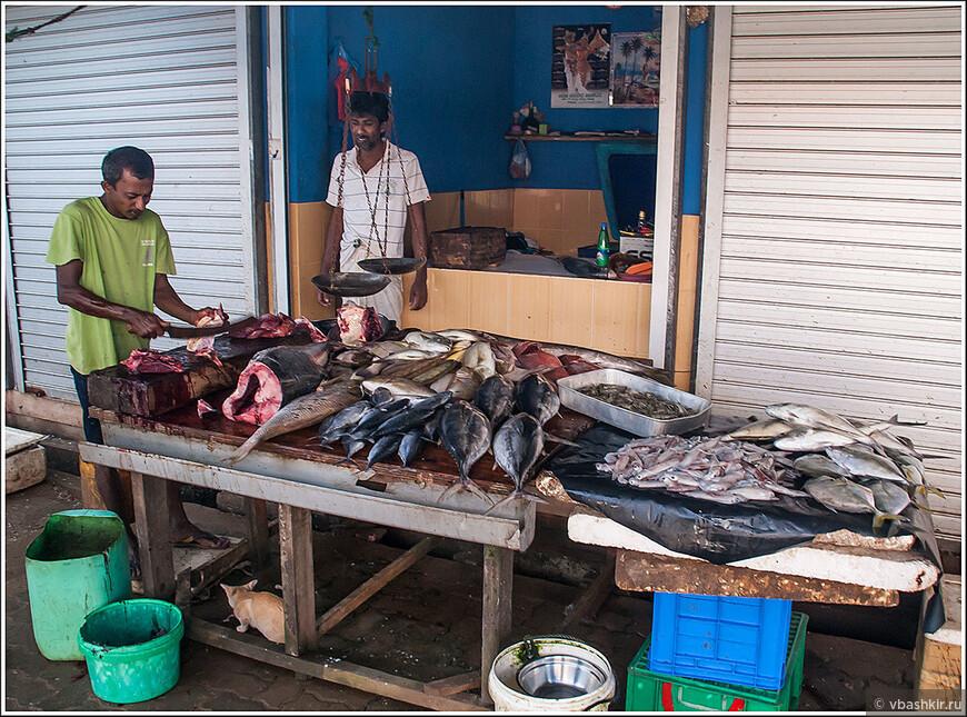 Хиккадува. На рыбном рынке.