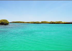 На острове Исабела цвет воды самый бирюзовый.