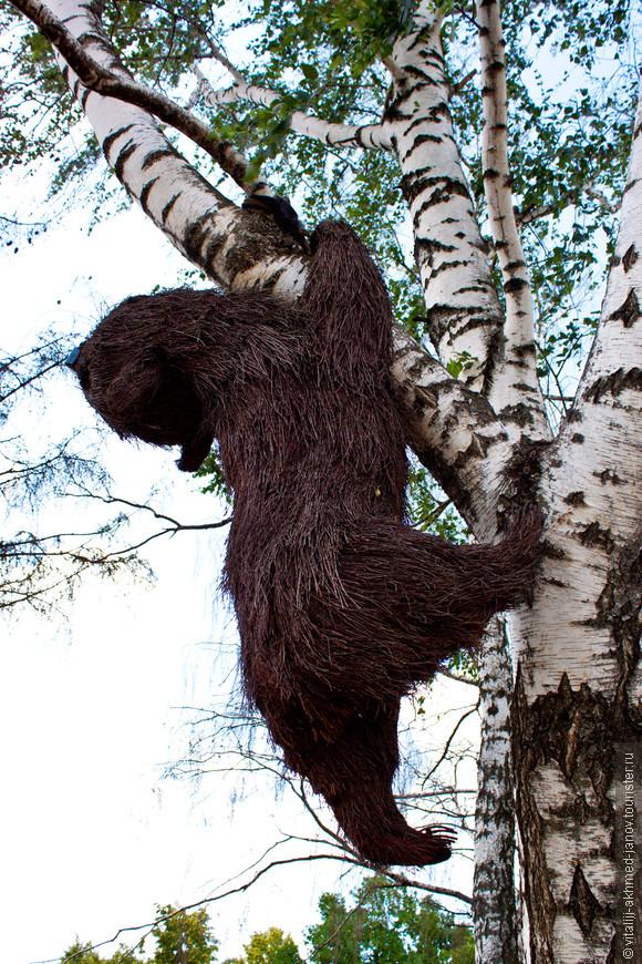 Там даже медведи по деревьям лазают...