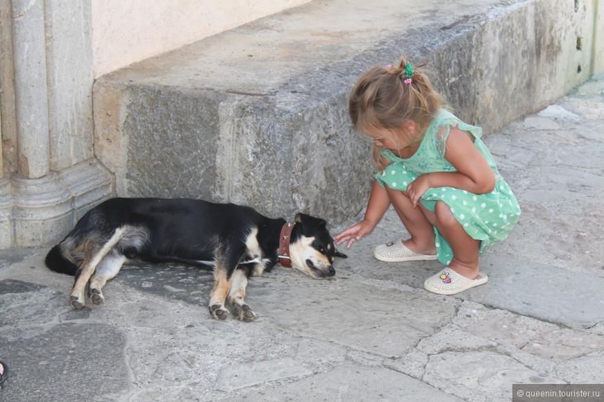 Девочка и собачка на пороге у входа в Монастырь Морача
