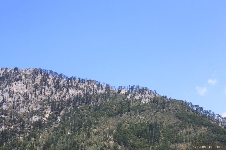 Именно в силу такого покрова гор Ченогорию так назвали.