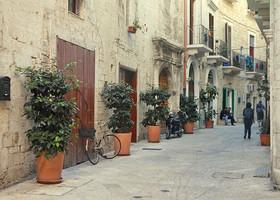 Такое озеленение мы часто встречали в старых городах Италии.