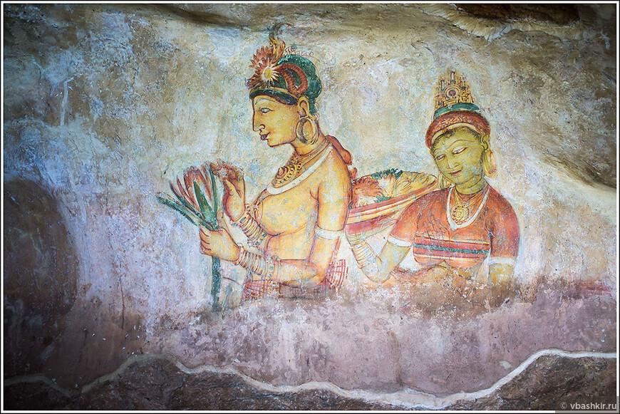 srilanka_1522.jpg