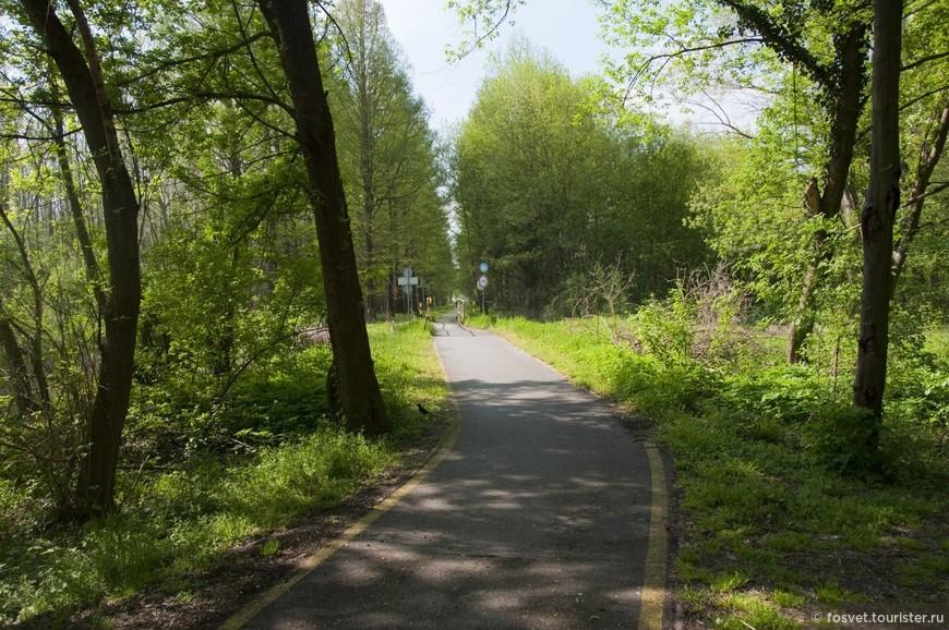 велосипедная дорожка, по которой можно добраться до соседнего города Кестхей - одного из главных городов озера Балатон.