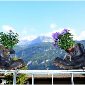 Проезд от Zurich HB: в 00 минут каждого часа - 2 пересадки, 2:22 в дороге: Цюрих - Берн (поезд в направлении Бриг, 57 минут езды), Берн - Интерлакен Ост (отправление из Берна в 4 минуты с пятого пути в направлении Интерлакен Ост, 53 минуты езды), затем Интерлакен Ост - Бриенц (в 4 минуты с 4 пути, в направлении Luzern, 18 минут езды). в 04 минуты ежечасно - 1 пересадка в Люцерне, 2:30 в пути: Цюрих - Люцерн(отправление с 4 пути, прямой поезд до Люцерна, в пути 45 минут), затем Люцерн - Бриенц (в 55 минут с 12 пути в направлении Interlaken Ost, 39 минут езды).  в 32 минуты каждого часа - с 3 пересадками, 2:24 в пути . Zurich HB - Bern (направление - Genève-Aéroport, 17 платформа, 57 минут езды), Bern - Spiez (с 3/4 пути в 35 минут в направлении Brig, в дороге 27 минут), Spiez - Interlaken Ost (в 5 минут со 2-го пути в направлении Interlaken Ost, 22 минуты), и наконец Interlaken Ost - Brienz (отправление в 33 минуты с 4-го пути в направлении Meiringen, 23 минуты езды). Прошу прощения за такие подробности, но вдруг кому-то пригодится )))