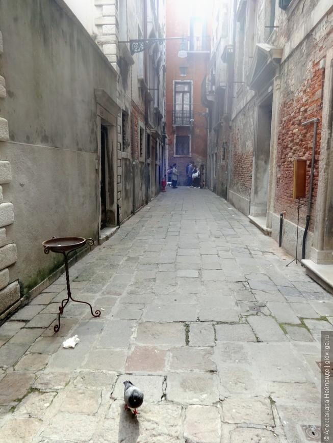 Закоулки Венеции. Как свет в конце тоннеля - люди. Мы с голубем не одни в этих каменных джунглях!