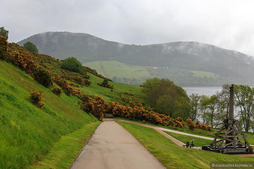 К нему ведет эта дорога, а вокруг покрытые весенней зеленью холмы и какие-то цветущие кусты...