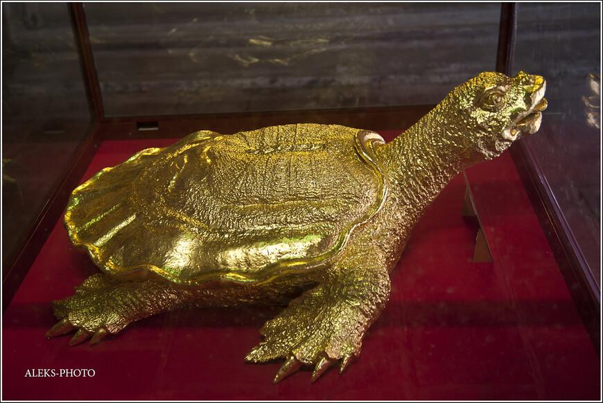 По азиатским традициям, черепаху принято считать символом долголетия и выносливости. Поэтому во многих храмах вы можете увидеть позолоченных черепах. А в храме рядом с озером Хоан Кием можно увидеть чучело гигантской черепахи, с которой связана целая легенда... Это - позолоченная - лишь одна из немногих копий...