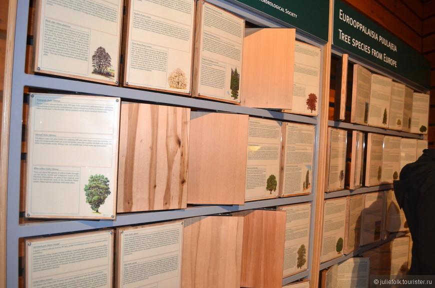 Интерактивная стена, посвященная разным видам деревьев: на каждой дощечке с одной стороны рассказывается о типе деревьев, а с другой стороны можно посмотреть на рисунок самого дерева.