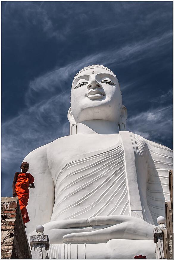 srilanka_2472.jpg