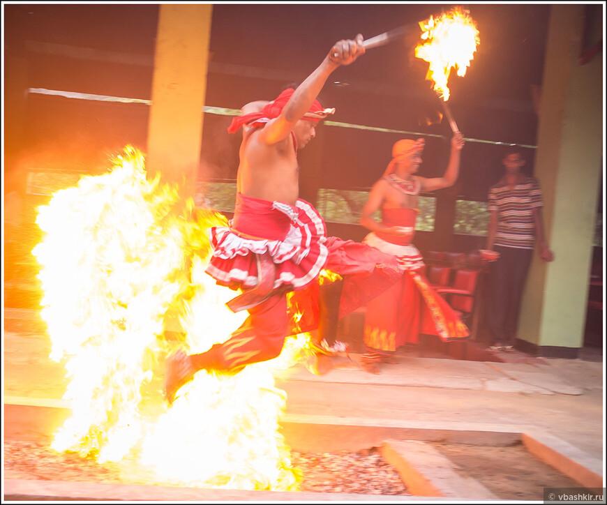 srilanka_3137.jpg