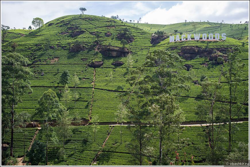 srilanka_4136 (2).jpg