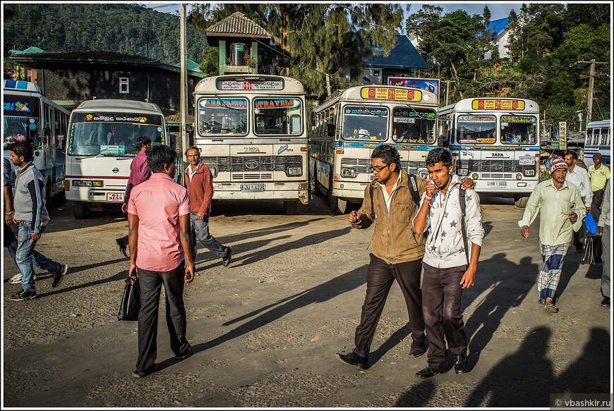 srilanka_4247.jpg