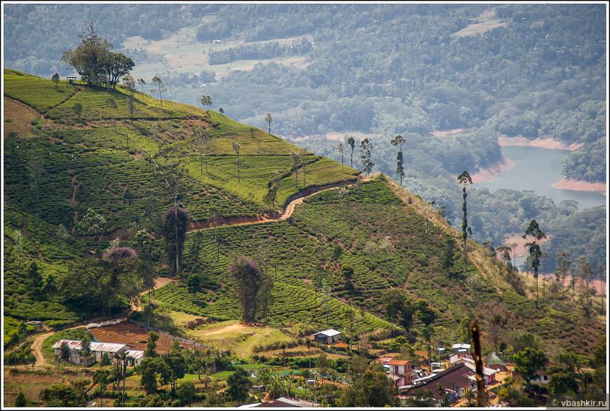 srilanka_4405.jpg