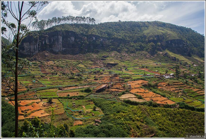 srilanka_4425.jpg