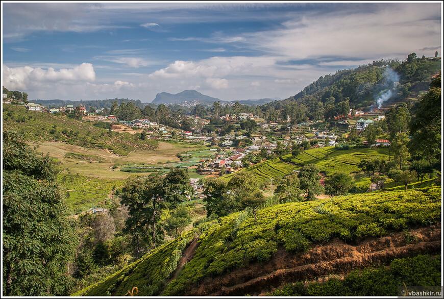 srilanka_4525 (2).jpg