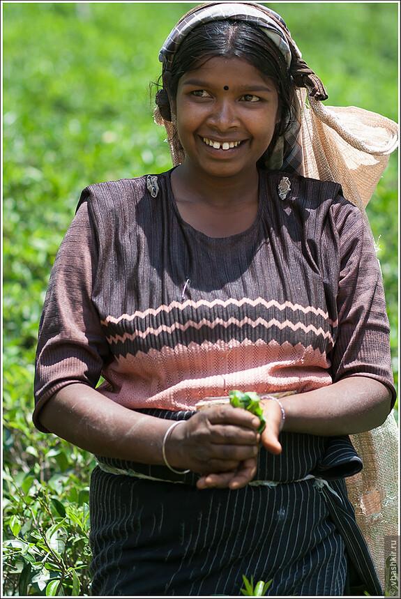 srilanka_4604.jpg