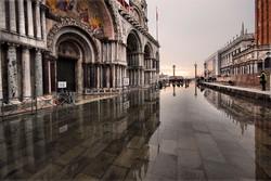 Завтра состоятся похороны Венеции