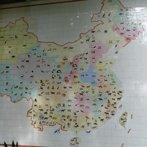 Зоопарк Шанхая