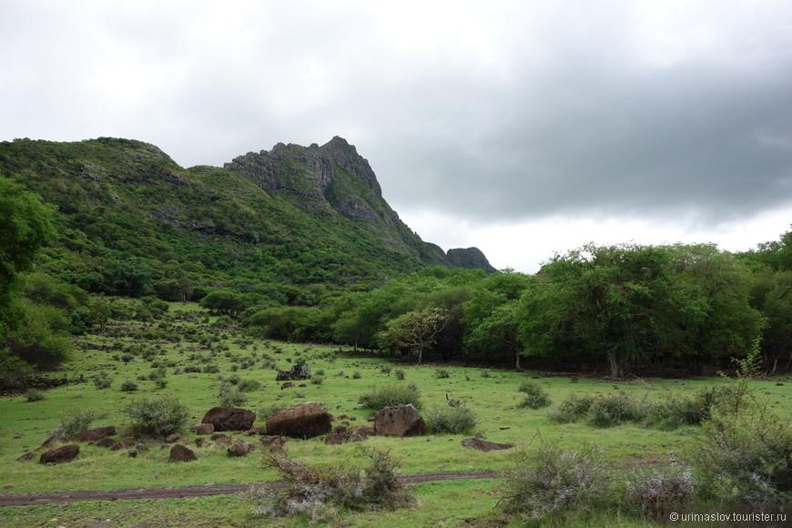 Национальный парк. Тут водится много кабанов, фазанов и оленей. Так как хищников нет, то разрешают отстрел.