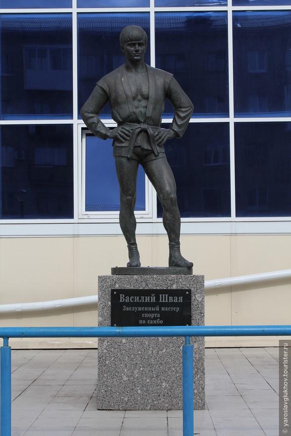 Памятник Швае.