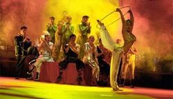Туристов приглашают пожить в испанском цирке