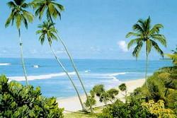 Комендантский час введен на курортах юга Шри-Ланки