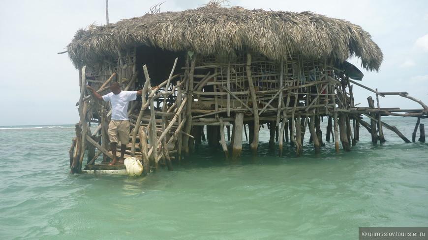 Экскурсия в море, где стоит Пеликан бар.