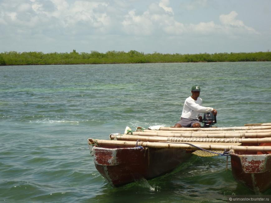К мангровым зарослям добирались на другом катамаране. Он перед вами. Нас тоже он поначалу шокировал :-)