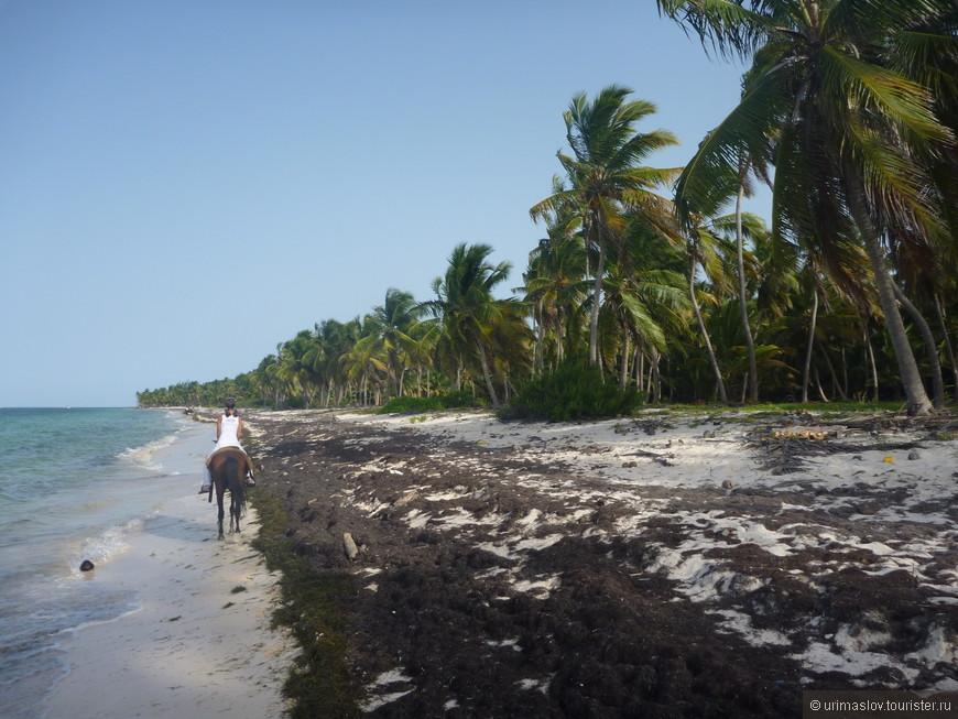 Это не пляж. Это просто берег. Дикий и прелестный.
