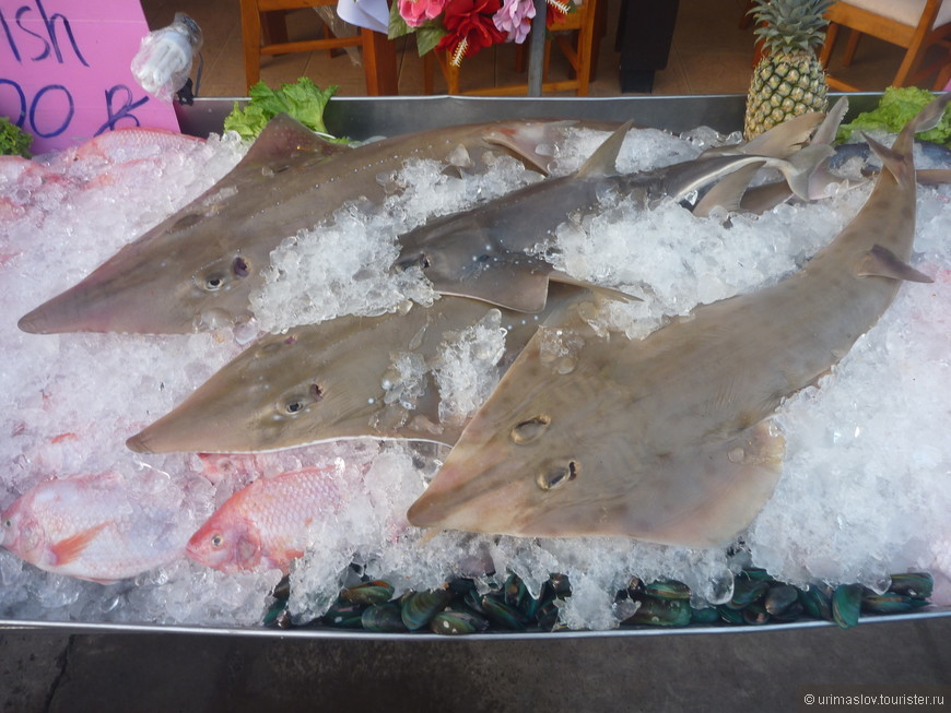 А вот и акулки для супа и прочих блюд.