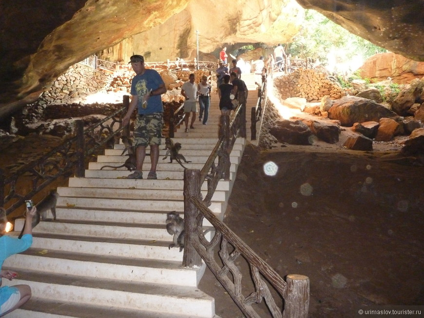 Посещение подземного буддйского храма. И там обезьяны. Они с хвостами.