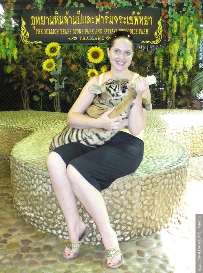 можно покормить тигрят в парке миллионных камней