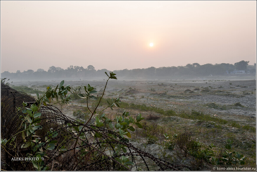 Солнце едва пробивалось сквозь пелену тумана и серого затянутого неба. Почти, как у нас в Северном полушарии. А ведь мы находимся в жаркой Индии (В Агре летом бывает до +45). Но мы прибыли сюда зимой...