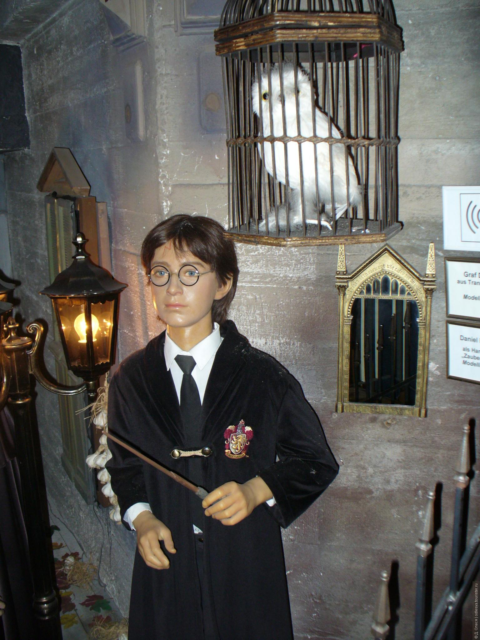 конечно, фото всех экспонатов музея мадам тюссо могли кататься горках