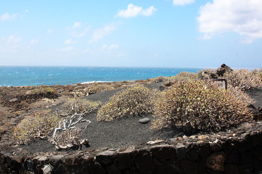 Прибрежная полоса. Черный песок, бирюзовый атлантический океан. Остров Ланзароте.