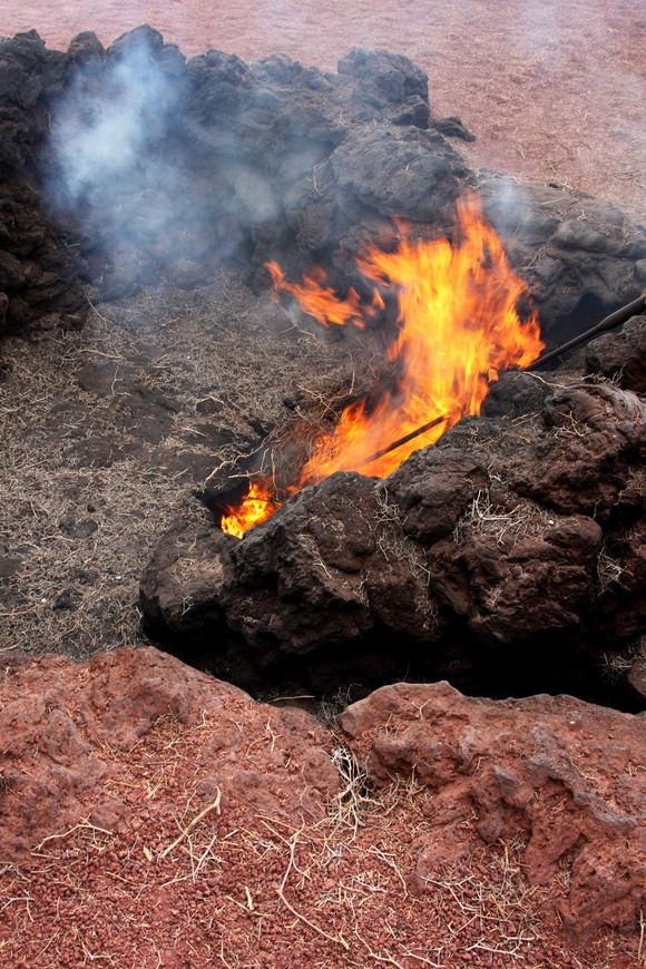 Национальный парк Тиманфания на острове Ланзароте. Разломы земли, где по прежнему сохранилась вулканическая активность. Песок в этих местах обжигающий руку, а все, что попадает в разлом, сгорает.