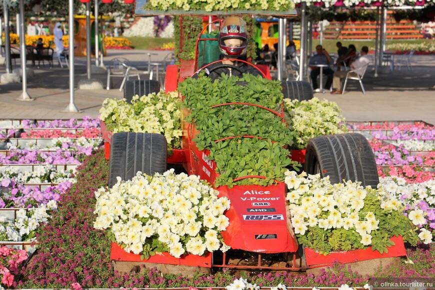Из неувиденного. Насколько я слышала, в Miracle Garden в конце мая-начале июня должен был открыться парк бабочек. Но в 2013 году на летние жаркие месяцы парк закрывался, как будет в 2014 году - не знаю.