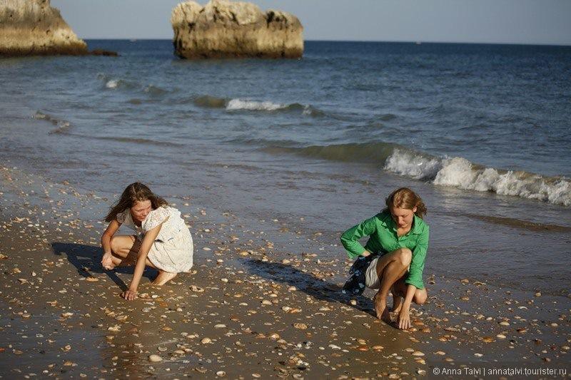 Kогда отлив, весь пляж усыпанный  ракушками и маленькими крабиками,  которые убегают к океану.