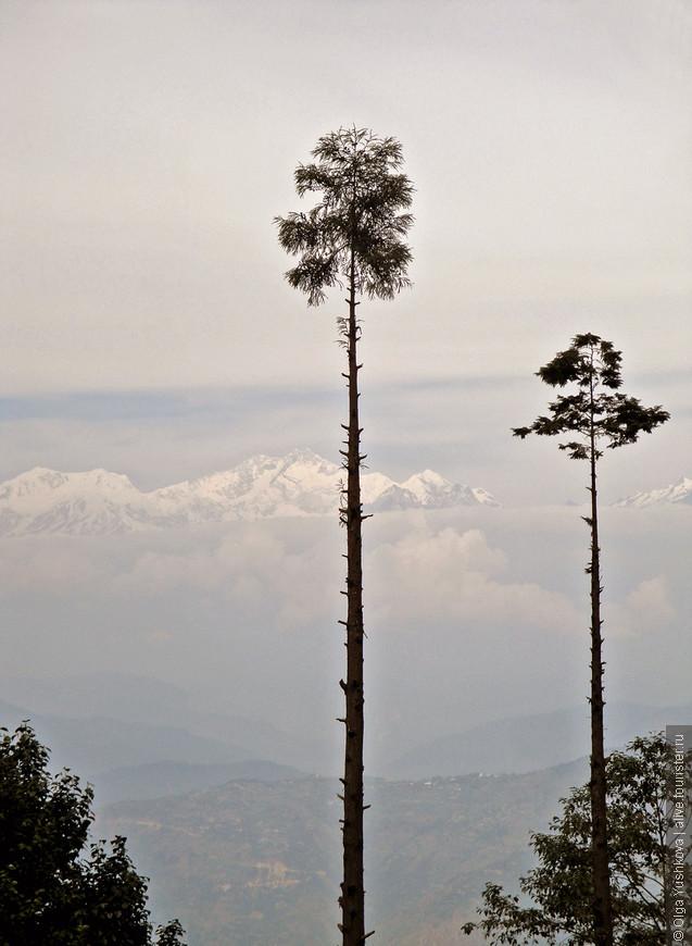 Вот такие вот призрачно-нереальные пейзажи... Это уже дорога из Дарджилинга в Сикким...