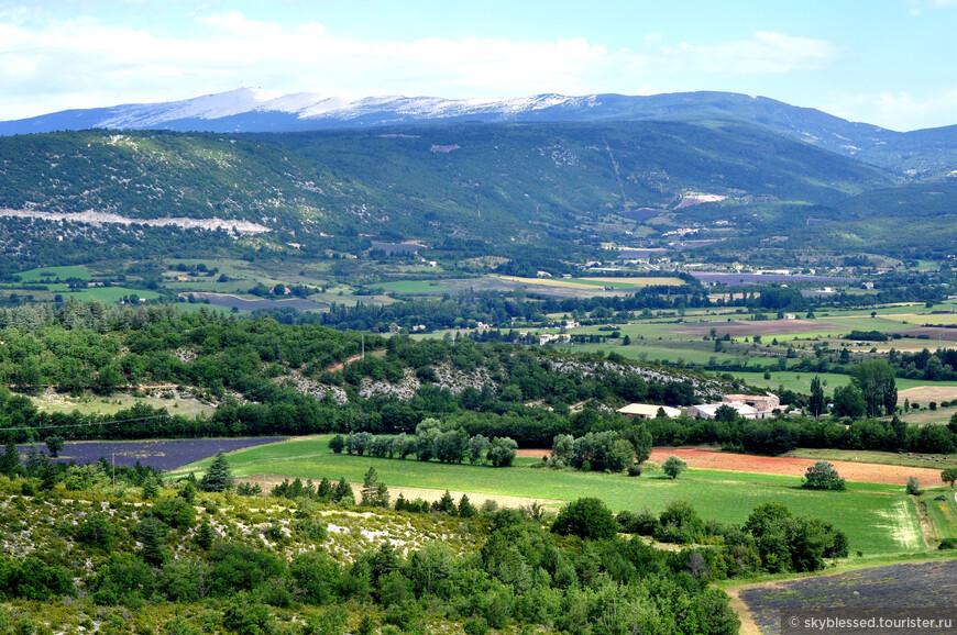 горы и поля лаванды в направлении деревни Sault