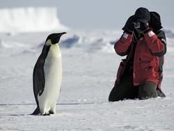 В Антарктике появился новый маршрут для экстремальных туристов